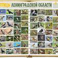 Отдается в дар Птицы Ленинградской области (2 части)