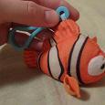 Отдается в дар Рыбка Немо
