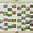 Отдается в дар Растения Ленинградской области