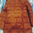 Отдается в дар Куртка женская демисезонная, размер 50 (XXL)
