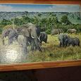 Отдается в дар пазл 500 деталей. слоники