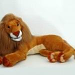 Від кошенят до левів