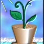 Растения: дом и сад