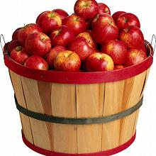 Отдается в дар Яблочный квас