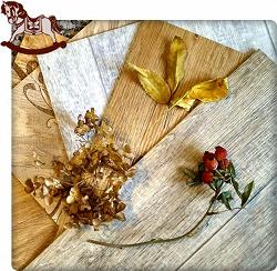 Отдается в дар «Образцы линолеума»