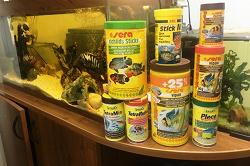 Отдается в дар «корм Тетра для аквариумных рыбок»
