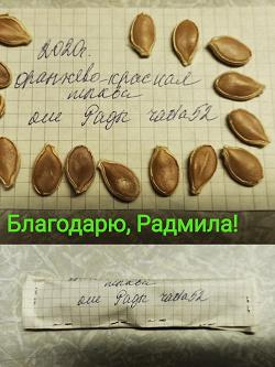 Отдается в дар «Семена тыквы огородникам»