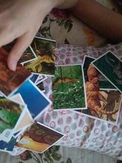 Отдается в дар «Наклейки Дикси Смотри, динозавры!»