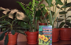 Отдается в дар «Книга «Все о комнатных растениях»»
