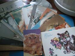 Отдается в дар «Обратно открытки с кошками»