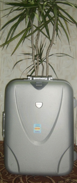 Отдается в дар «чемодан»