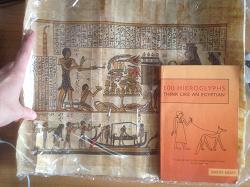 Отдается в дар «Папирус»