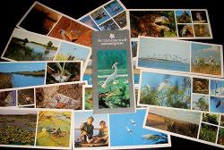 Отдается в дар «Набор открыток -Астраханский заповедник»
