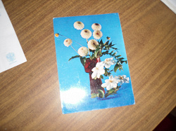 Отдается в дар «Открытки СССР (остались 3 одинаковых открытки с 1 фото)»