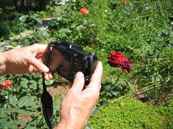 Отдается в дар «Фотоаппарат Nikon»