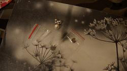 Отдается в дар «Подвески серебряные от ювелирной сети GOLD»