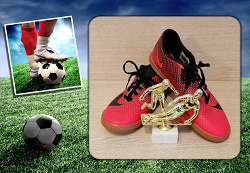 Отдается в дар «Футзалки/кроссовки Nike 41 размер»