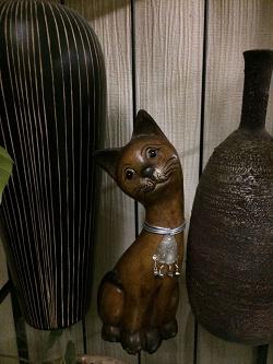 Отдается в дар «Кошка.»