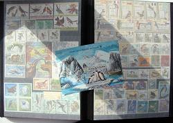 Отдается в дар «Чешские марки (блоки)»