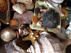 Отдается в дар «Натуральные камни, морские раковины и стеклянные шарики»