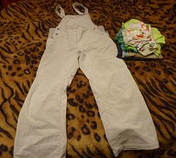 Отдается в дар «Беременная кошка в мешке, одежда для беременных»