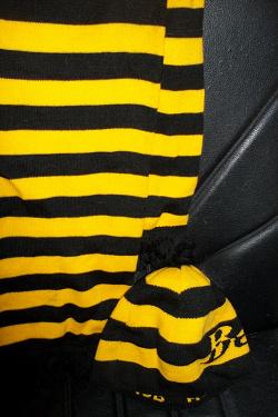 Отдается в дар «комплект шапка-шарф БИ Лайн»
