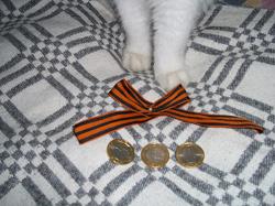 Отдается в дар «Набор юбилейных монет»