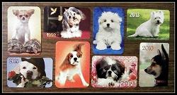 Отдается в дар «Календарики с собачками»