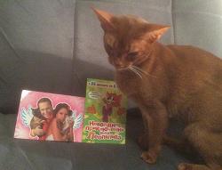Отдается в дар «Котики на открытках»
