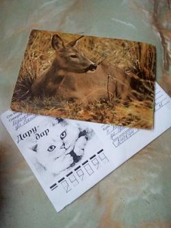Отдается в дар «Советские открытки»