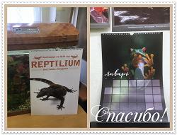 Отдается в дар «Календарь 2019 ( Reptilium )»