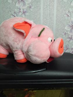 Отдается в дар «Большая свинья. Срочно!»