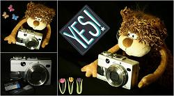 Отдается в дар «Фотоаппарат Sony DSC-V1»