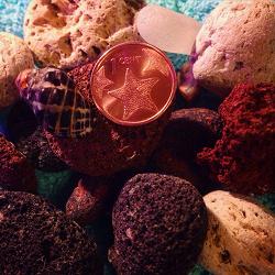 Отдается в дар «Монета Багамских островов»