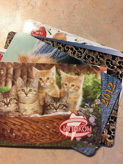 Отдается в дар «Котик календарный»