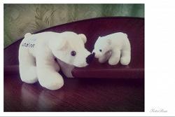 Отдается в дар «белые медведи»