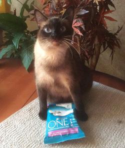 Отдается в дар «Purina one для кошек.»