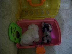 Отдается в дар «my pet grooming salon игрушка»