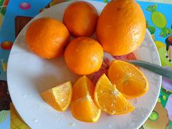 Отдается в дар «Апельсины»