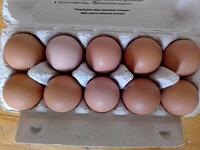 Отдается в дар Яйцо куриное 4 десятка