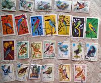 Отдается в дар почтовые марки с птицами
