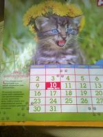 Отдается в дар Календарь в коллекцию