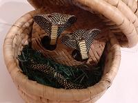 Отдается в дар Шкатулка с охранными змеями), плетёная,