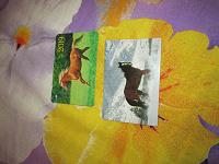 Отдается в дар карманные календарики с лошадками