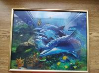Отдается в дар Картина с дельфинами