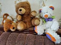 Отдается в дар Мягкие игрушки ищут дом