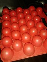 Отдается в дар Лоток для 30 яиц
