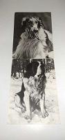 Отдается в дар Советские открытки часть 4