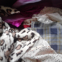 Отдается в дар Лоскуты ткани для кукольников