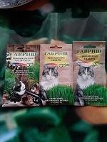 Отдается в дар Трава для кошек и грызунов.
